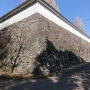 二の丸から見上げる本丸石垣