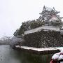 雪の岸和田城[提供:岸和田市]