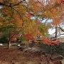 東御門跡と月見櫓跡と紅葉