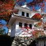 紅葉と隅櫓と天守