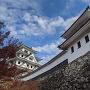 祝郡上八幡城で岐阜県下118城コンプリート(◍•ᴗ•◍)✧*。紅葉がとっても綺麗でしたヾ(´ー`)ノ