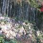 秀次館跡の石垣