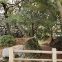 表御門脇の石垣と堀