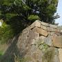 二の丸西鉄門北側の多聞櫓台の石垣(土橋より)