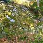 城塞化された石垣
