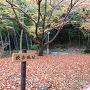 吉田郷士館からの登城口