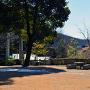 武田神社 鳥居と富士山