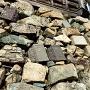 天守台石垣の転用石