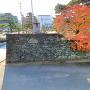 モミジと黒門跡枡形石垣(1)