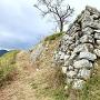 主郭側面の石垣
