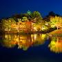夜の岡山後楽園から見た天守[提供:岡山県観光連盟]