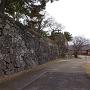 西門からの天守台石垣