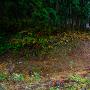 畑谷地区から簗沢への道に沿って続く空堀