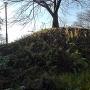 空堀の中から見上げた本丸の土累