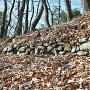 石垣(飛騨の丸)