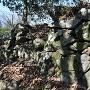 石垣(二の丸西面)