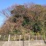 敦賀新港釣り公園駐車場より敦賀陣屋方面を望む