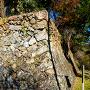 正面の石垣