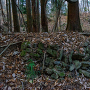 出郭 池跡の石垣