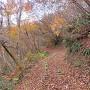 平ノ峰への遊歩道