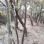 西2郭の井戸跡