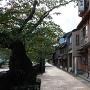 主計茶屋街(浅野川端)
