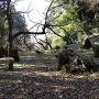 津森城 二の天守曲輪