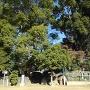 山内一豊生誕の地碑 説明板 大河ドラマ放映記念碑等がある神明生田神社の一角