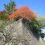 平川門近くの石垣