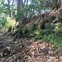 二の郭土塁の石積