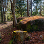 出丸虎口の岩