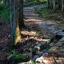 藤坂の石畳と排水溝