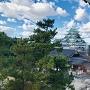東南隅櫓からの眺望(天守と本丸御殿)