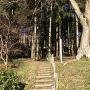 登城口から登城路を見上げる