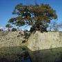 二の丸御門跡の石垣と中堀
