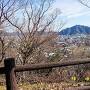 頂上南側の東屋より岐阜城(金華山)を望む