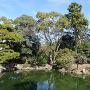九條池とアオサギ