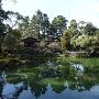 池越しに眺める拾翠亭(しゅうすいてい)