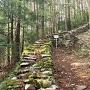 竪堀と石塁