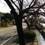 白井城の城下町に流れる水路