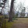 イチョウの木周辺(櫓台?)