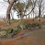 天守閣跡付近の再現石垣