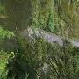日本一の高石垣