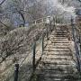 南曲輪にのぼる最初の階段