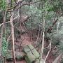 くさび跡のある花崗岩(巨石)