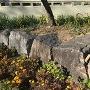 城跡公園横にある石垣の石
