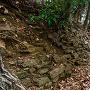 郭1の東虎口の下の石積と堀切