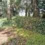 城址(藤崎神社北東側)