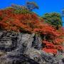 石山寺硅灰岩と多宝塔