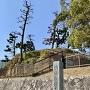 於大の方出生地の石碑と土塁の遺構